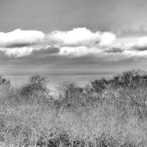 Treshnish-sea-view
