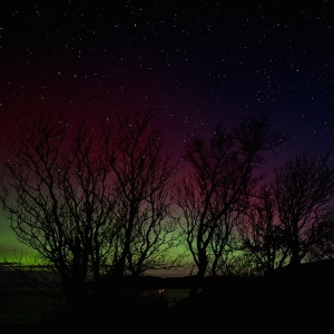 Mull night skies northern lights