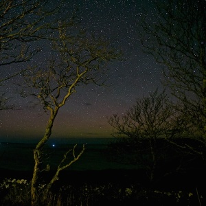 Aurora stars on Mull