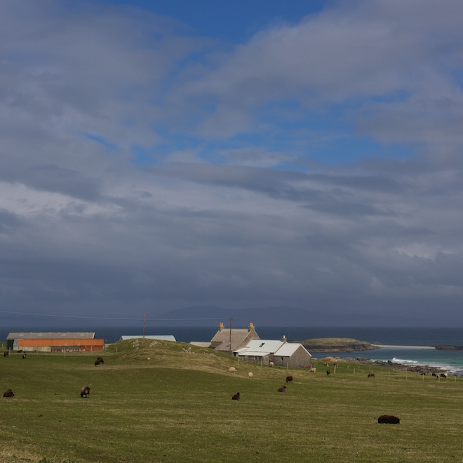 day out Iona Mull cottages Treshnish