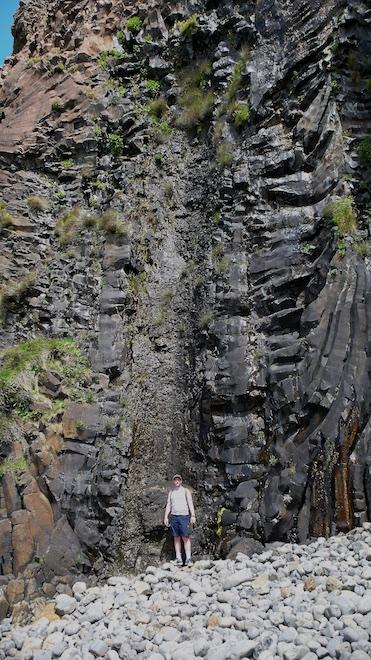Fossilised tree Burg Mull scale