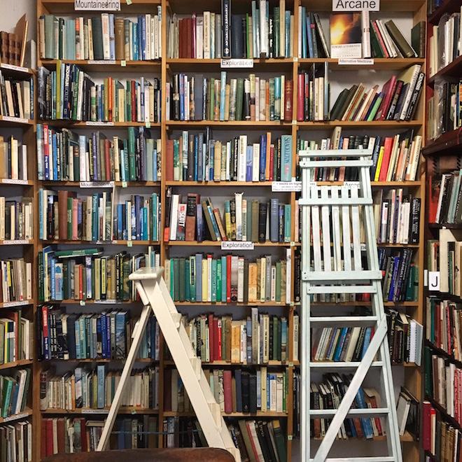 beltie-books-wigtown-bookshop-ladders