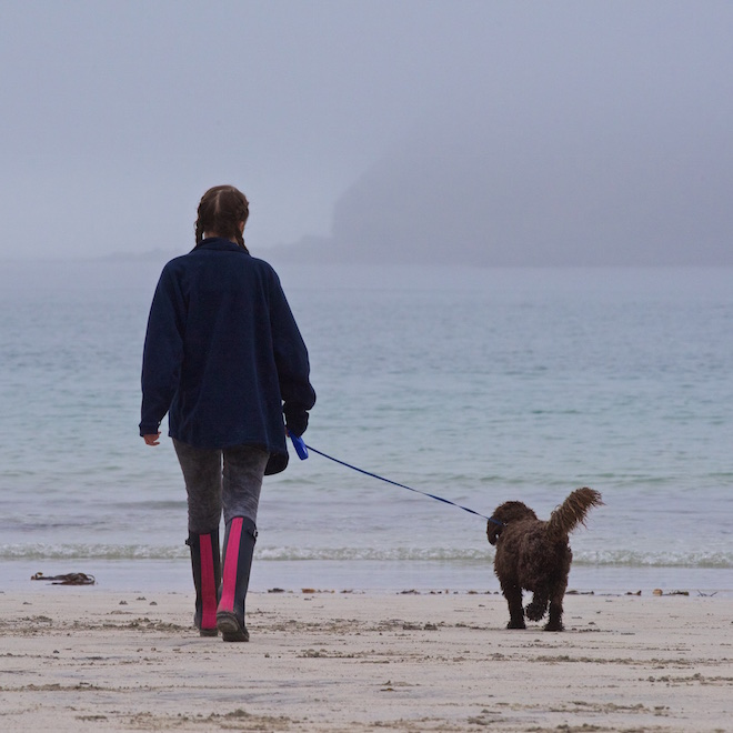 family holidays on mull treshnish cottages beaches