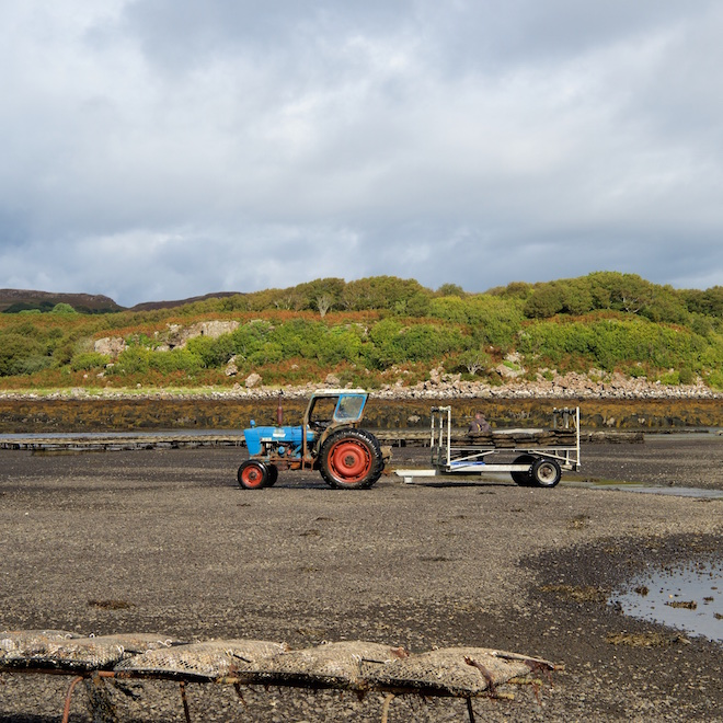 isle mull oysters tour tractor