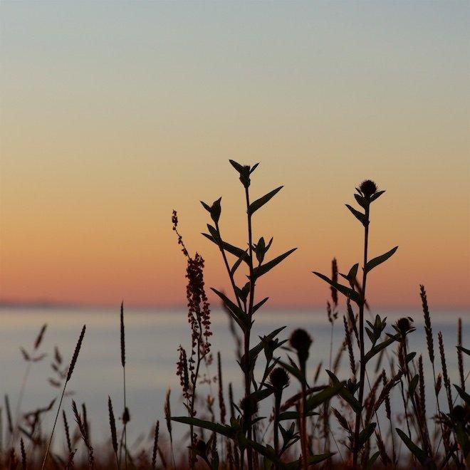 top eco friendly cottages treshnish mull scotland