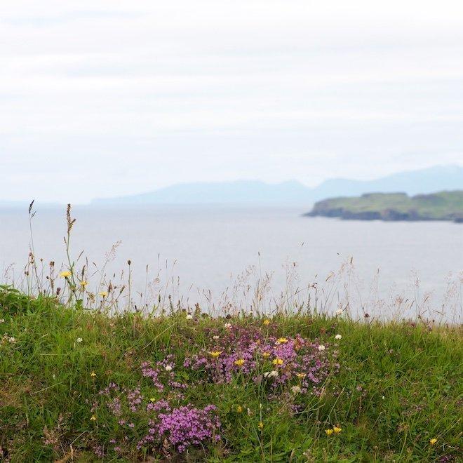 top eco friendly treshnish cottages mull scotland