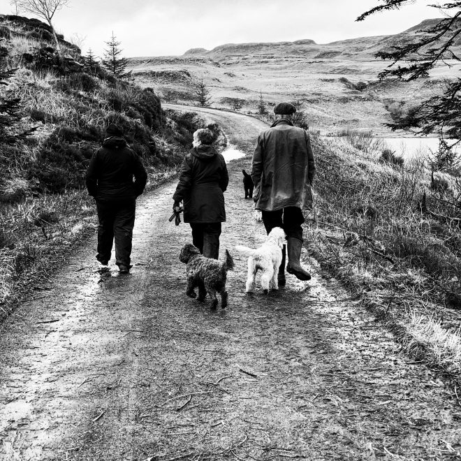 Dog walks on Mull Near Treshnish cottages