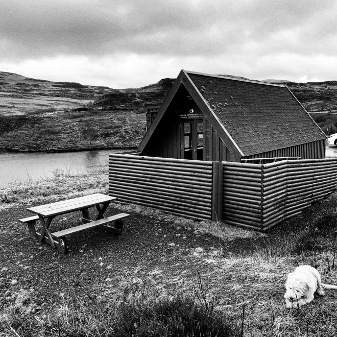 Dog walks on Mull wildlife hide Loch Tor