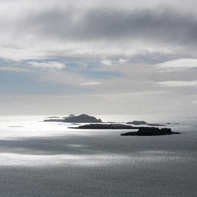 Treshnish Isles during lambing time on Mull