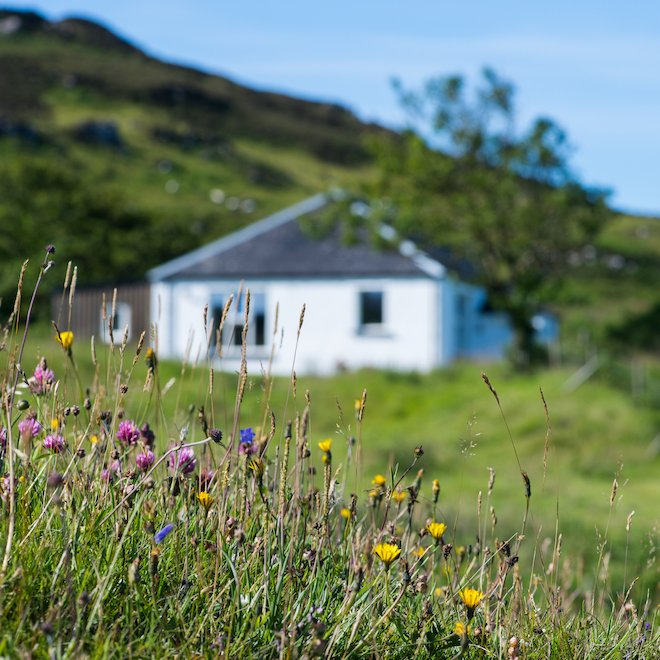 post lockdown holiday mull haunn cottages