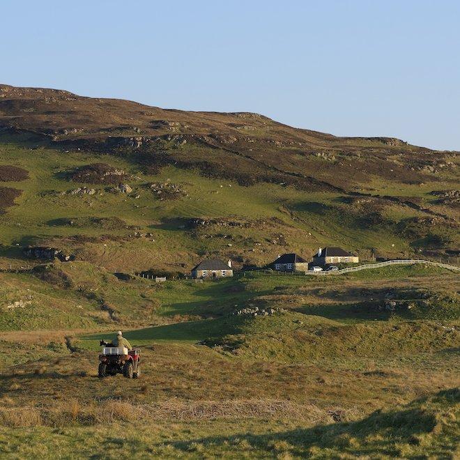 Lambing time at Haunn
