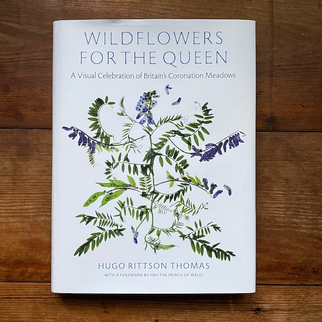 Wildflowers for the Queen Hugo Rittson Thomas
